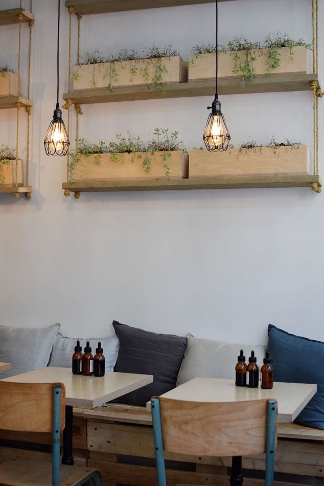 Fuumi: cosy and bright, with the most friendly, smily owners.