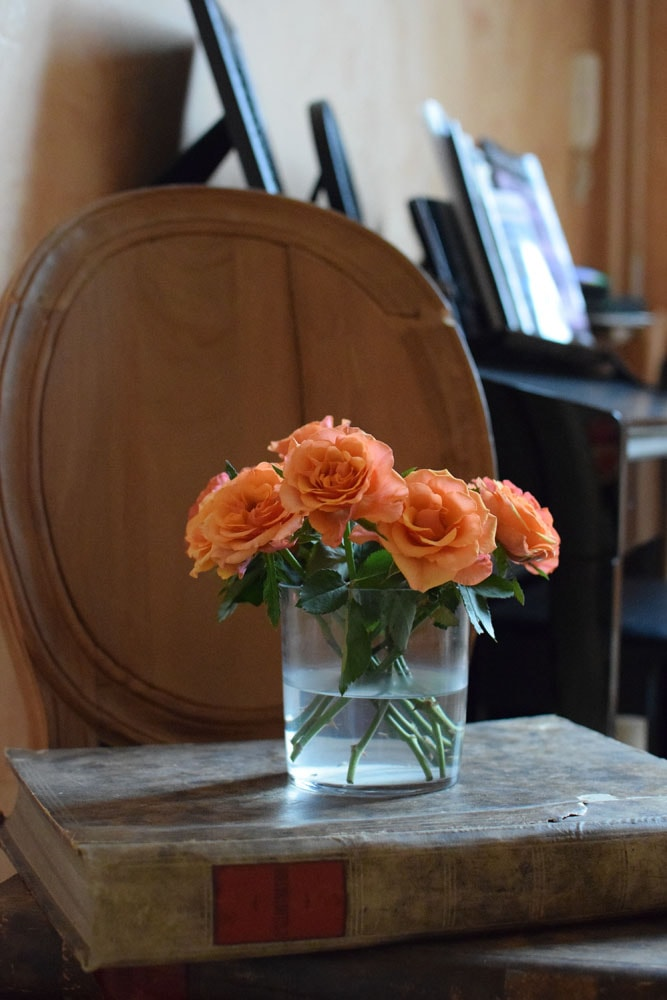 maison ailleurs flowers