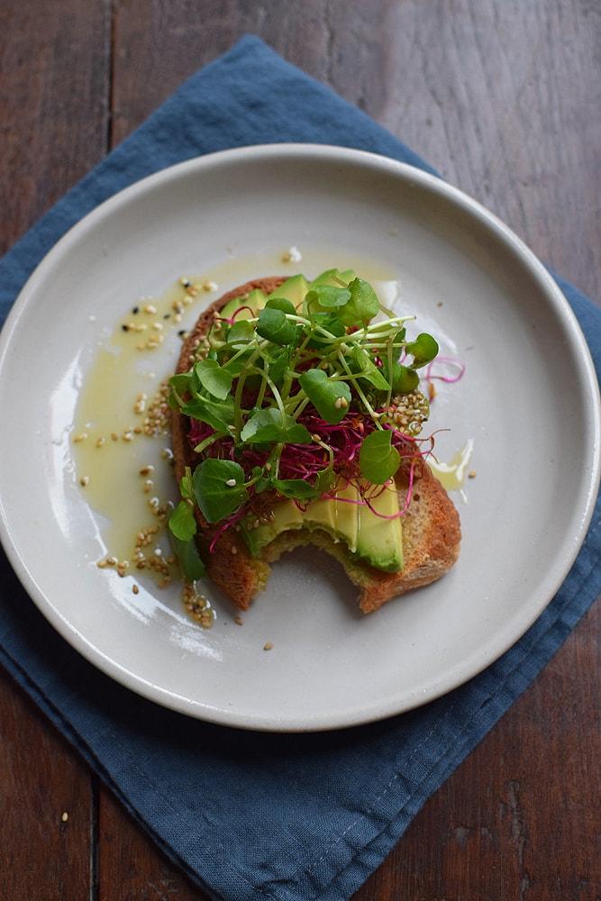 beyond bread avocado addict