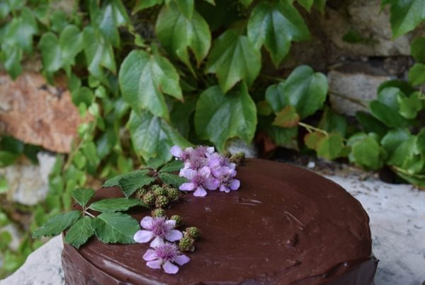 moonrise gluten free chocolate cake
