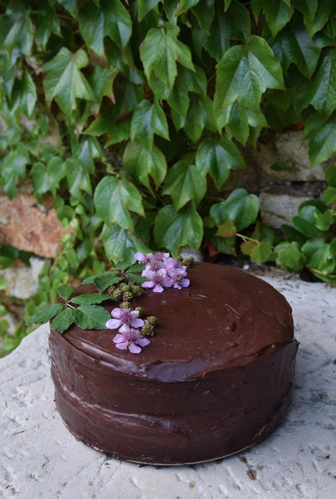 moonrise gluten free chocolate cake
