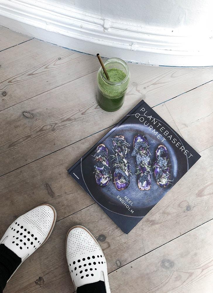 plant power food vegan recipes book