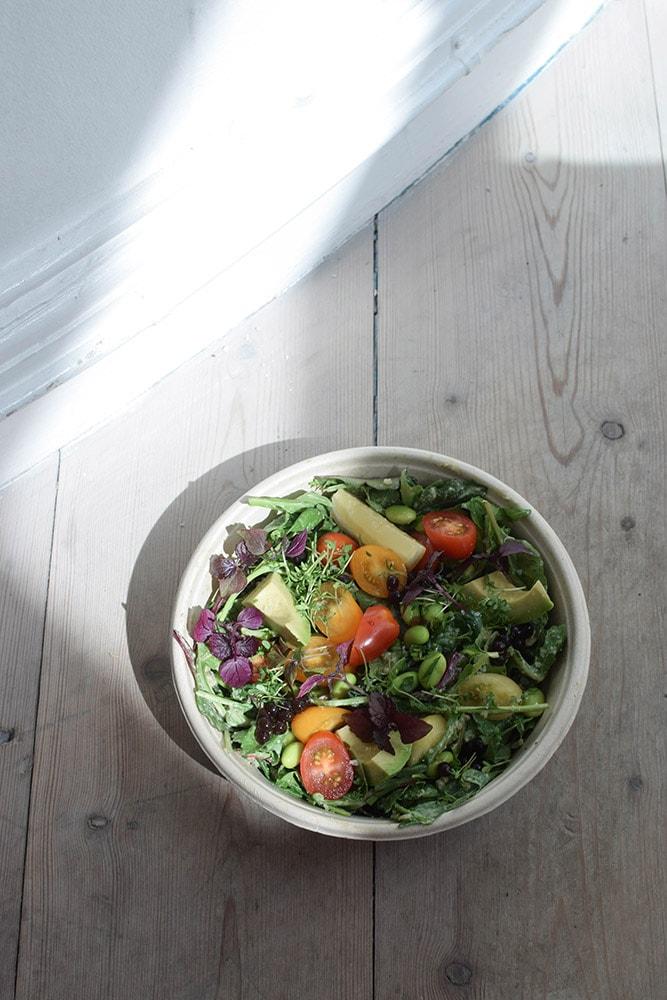 plant power food green bowl gluten free
