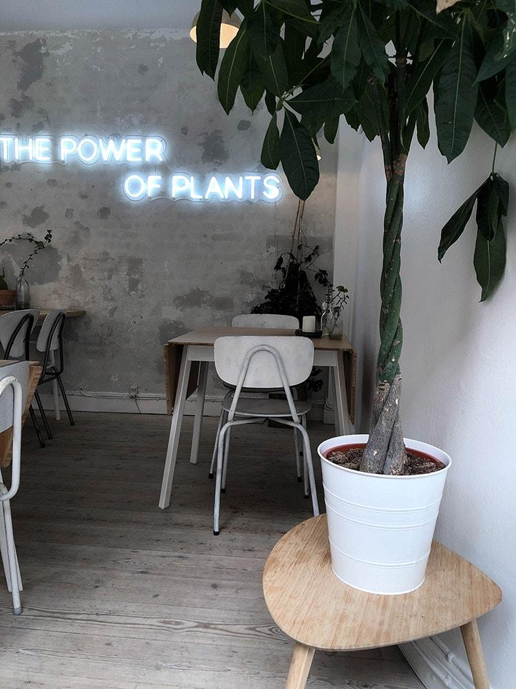 plant power food restaurant vegan gluten free menu