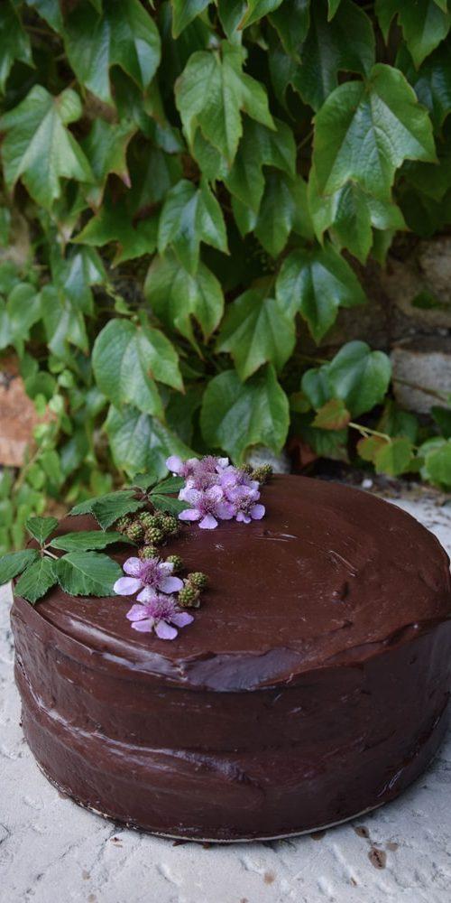 moonrise gâteau sans gluten